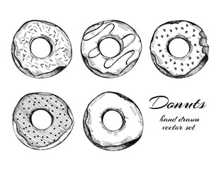 Hand drawn tasty donuts. Graphic vector set. All elements are isolated