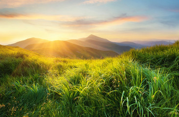 Fototapeten Gebirge Mountain valley during sunset. Field with fresh grass and the mountain hills. Natural landscape at the summer time