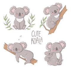 Cute koala illustration, vector set.