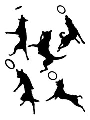 Belgian shepherd dog pet animal silhouette 01. Good use for symbol, logo, web icon, mascot, sign, or any design you want.