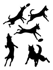Belgian shepherd dog pet animal silhouette 02. Good use for symbol, logo, web icon, mascot, sign, or any design you want.