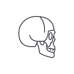 Skull side view line icon concept. Skull side view vector linear illustration, sign, symbol