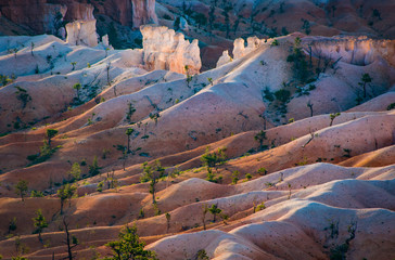Deurstickers Canyon beautiful landscape in Bryce Canyon with magnificent Stone formation