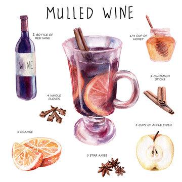 watercolor drawing. mulled wine recipe set, sketch