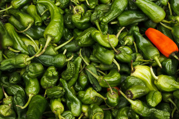 Hot green and Red Chili Peppers for Sale in the Market