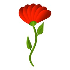 Red honey flower icon. Cartoon of red honey flower vector icon for web design isolated on white background