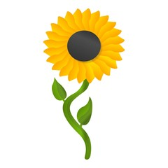 Sunflower icon. Cartoon of sunflower vector icon for web design isolated on white background