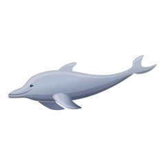Grey dolphin icon. Cartoon of grey dolphin vector icon for web design isolated on white background