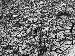 Große Trockenheit oder Dürre an der Schwarzmeerküste in Kefken in der Provinz Kandıra in Kocaeli in der Türkei, fotografiert in neorealistischem Schwarzweiß