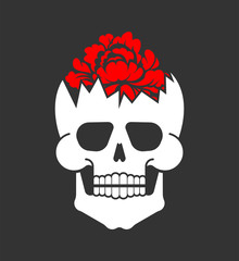Flower inside skull. Broken skeleton head. Vector