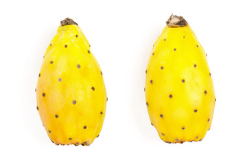 yellow prickly pear or opuntia isolated on a white background. Top view. Flat lay