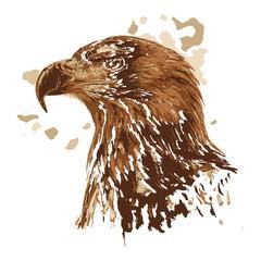 Kreative Zeichnung Adler