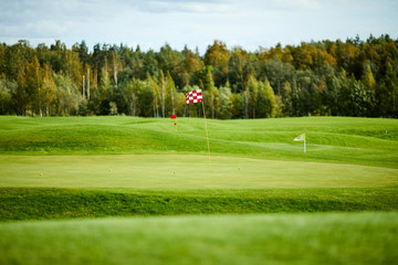 Flags on vast green field for playing golf with forest on background