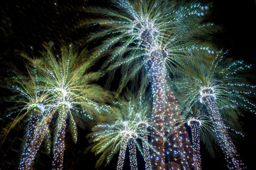Holiday palm trees decorated with glowing Christmas lights look like New Year's Eve fireworks under dark night sky