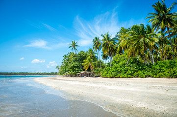 Recess Fitting Caribbean Bright tropical view of deserted coastline with a rustic wooden shack nestled into green palm trees on the shore of a remote island in Bahia, Brazil