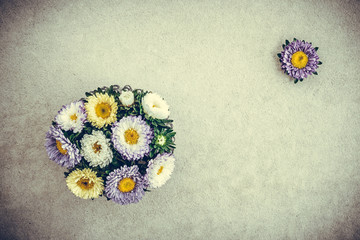 Bouquet of asters retro style