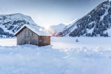 Winter in den Alpen Wall mural