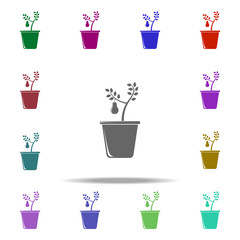 pear tree in pot illustration icon. Elements of Fruit in pot in multi color style icons. Simple icon for websites, web design, mobile app, info graphics