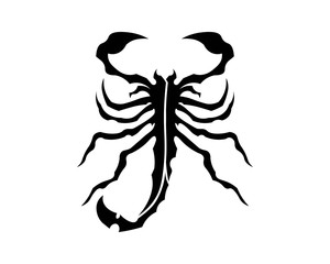 Scorpion Logo Template Vetor illustration