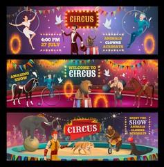 Circus show clown, animals, magician and acrobats