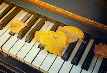 The old piano keys with fallen autumn yellow leaves