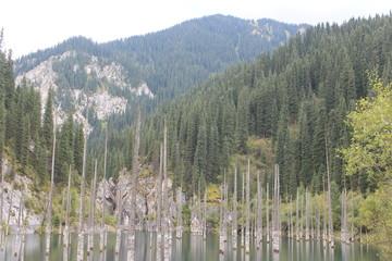 Kazakhstan, Kaiyndy lake, water, lake, nature, landscape, river, reflection, pond, sky, tree, trees, green, grass, forest, blue, summer, mountain, park, spring, autumn, plant