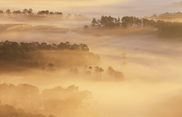 Keuken foto achterwand Bos in mist Amazing view of mountain, mist & cloud when dawn coming.