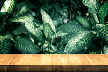 Empty of wood table top on beautiful leaf from garden backgrounds.For montage product display or key visual