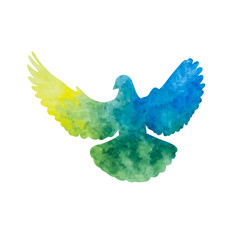 isolated, watercolor dove silhouette, flying bird