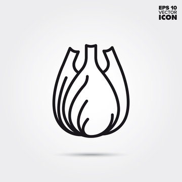 Fennel vegetable vector line icon