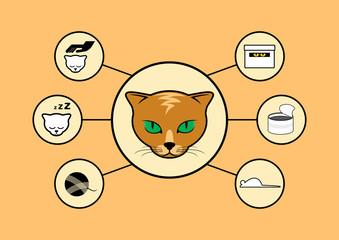 Cat infographic vector illustration. Cat icon set vector. Life of a cat. Redhead cat head illustration