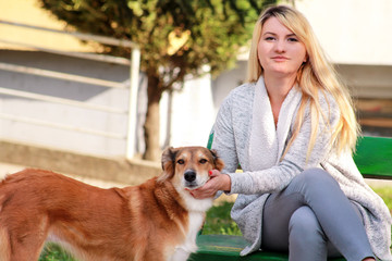 Beautiful girl with his Shetland sheepdog dog sitting and posing in front of camera on wooden bench at city park. Portrait of owner and Rough collie dog enjoys, resting and petting together outdoors.