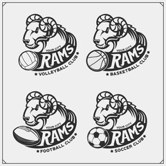 Labels, emblems and design elements for sport club with rams. Print design for t-shirts.
