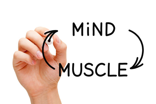 Mind Muscle Connection Concept