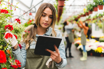 Florist holding digital tablet