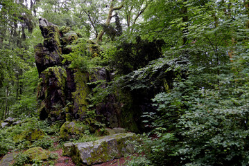 Wilhelmsteine: Rock outcroppings in a German forest