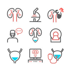 Kidney signs. Urology department. Line icons set. Vector symbols for web graphic.
