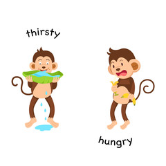 Opposite thirsty and hungry vector illustration