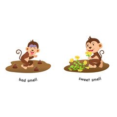 Opposite bad smell and sweet smell vector illustration