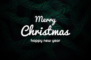 Party Poster and Happy New Year background. tree branches. Merry Christmas Festive Card. Copy space.