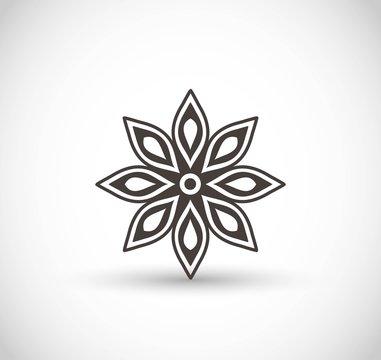 Star anise vector icon