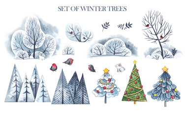 Watercolor set of winter trees, fir trees, decorated trees, trees in the snow, bushes on a white background, bullfinches and a hare.