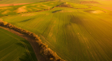Aerial landscape with green field, sunset light