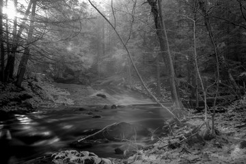 Rivers Meet In A Dark Mystical Forest, Infrared Photography