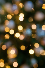 Defocused Christmas tree and garlands, yellow bokeh