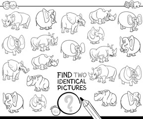 find two identical animal pictures color book