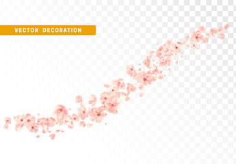 Pink flower petals and bud are flying circling isolated on transparent background