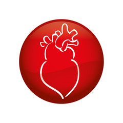 heart organ human icon