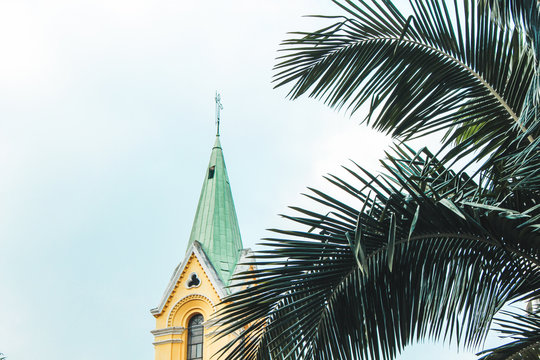 palm tree in front of a old church with a cross