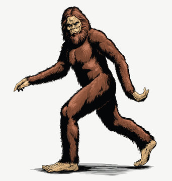 Walking Sasquatch vector illustration in full color